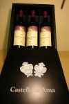 Castello di Ama - l`Apparita Merlot 1996 OWC 4500ml case
